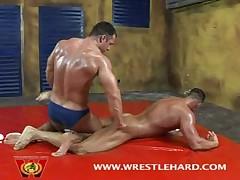 Bodybuilder Newcomer Fucks