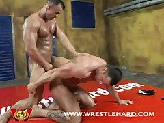 Bodybuilder Newcomer Fucks