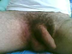 Erection Penis