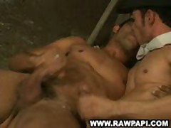 Sweet Sexy Latino Gay Hardcore