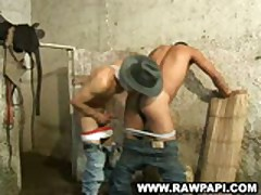 Nice Tight Ass Ethnic Gay Bareback