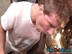 Queer Making Out And Hardon Sucking Off At The Work 8 By HardOnJob