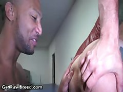 Buster Sly And Danny Lopez Hard Core Mixed Free Gay Sex 1 By GetRawBreed
