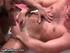 Igor Lucas And Zac Zaven Extreme Homo Hard Core Making Out On Rubbing Bed 6 By GetRawBreed