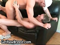 Adrian R. And Brenden Homosexual Barebacking Porno 5 By GetRawBreed