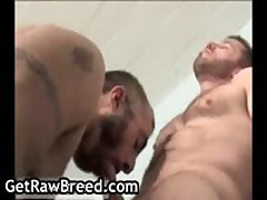Maxime Fuuq And Colin Roberts Homosexual Fucked And Sucked 9 By GetRawBreed
