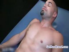 Kamrun And Diego Catalan Aroused Rimjob Action 12 By Gotrawbreed