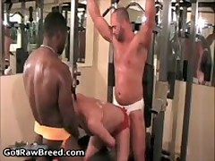 Tyler Reed, Nate Storm And Caleb Lucas In Super Amazing Queer Orgy 11 By GetRawBreed