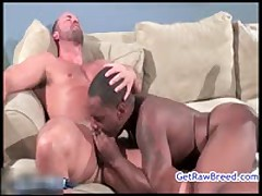 Tyler Reed And Kane Rider Anal Fucked 14 By Getrawbreed
