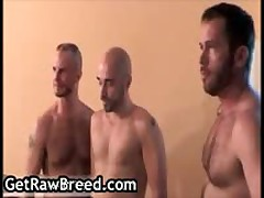 Thomas Steel, Nicholas And Maxime Fuuq Queer 3some 27 By GetRawBreed