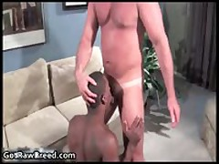 Tyler Reed And Kane Rider Gay Ass Fucking 2 By GetRawBreed