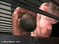 Kamrun And Travis Turner In Horny Gay Porn Fucking And Sucking 11 By GetRawBreed