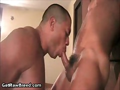 Rocco Martinez And Dominik Rider In Horny Gay Porn Fucking And Sucking 2 By GetRawBreed