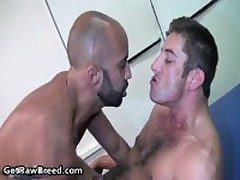 Igor Lucas And Zac Zaven Extreme Gay Hardcore Fucking On Massage Bed 12 By GetRawBreed