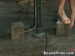 Hogtied Homosexual Slaves Gets Jerked Off 2 By BoundPride