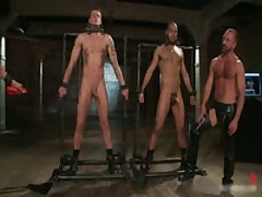 Leo And Trent In Very Extreme Gay Porn Bondage 5 By BoundPride