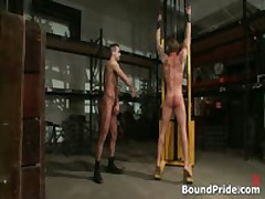 Phenix And Trent In Very Extreme Gay Porno Bdsm 9 By BoundPride