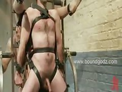 Two Gay Slaves Get Their Cocks Milked