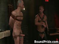 Dude Tight Up Like A Meatroll And Gets His Cock Sucked 1 By BoundPride