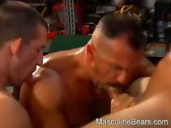 Bear Gives Buddy'S Ass His Power Tool