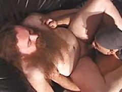 Bearded Bears