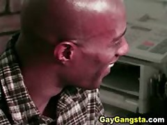 Black Gay Hot Cock Sucking