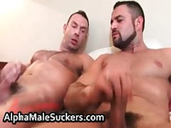 Antonio Cavalli And Marco Salqueiro Fucks And Sucks 8 By AlphaMaleSuckers