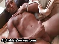 Extremely Steamy Homo Guys Fucked And Sucked Porno 57 By AlphaMaleSuckers