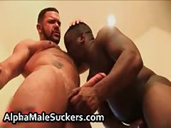 Amazing Hardcore Gay Fucking And Sucking Porn 17 By AlphaMaleSuckers