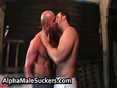 Extremely Horny Gay Men Fucking And Sucking Porn 33 By AlphaMaleSuckers