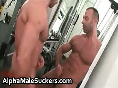 Steamy Gay Hardcore Fucking And Sucking 17 By AlphaMaleSuckers