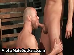 Very Hardcore Gay Fucking And Sucking Porn 17 By AlphaMaleSuckers