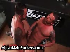 Sexy Gay Hardcore Fucking And Sucking 61 By AlphaMaleSuckers