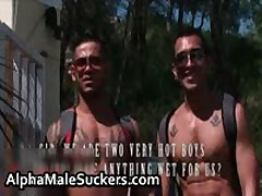 Very Hardcore Gay Fucking And Sucking Porn 25 By AlphaMaleSuckers