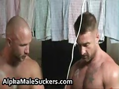 Extremely Horny Gay Men Fucking And Sucking Porn 11 By AlphaMaleSuckers