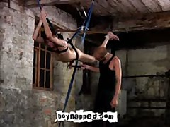 Suspended Punishment