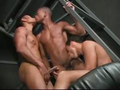 Brazilian Hung