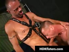 Free Very Extreme Homo Fisting Videos 2 By HDKfisters