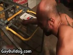 Very Extreme Homo Arse Making Out And Erection Sucking Off Iron 21 By GayBulldog