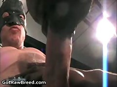 J.R. And Nate Storm In Aroused Free Gay Sex Fucked And Sucked 2 By GetRawBreed