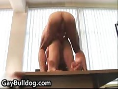 Extreme Homo Assfucking And Penetrator Sucking Action 11 By GayBulldog
