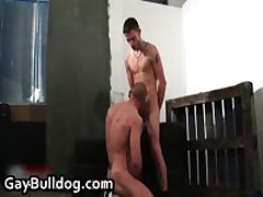 Very Extreme Gay Ass Fucking And Cock Sucking Action 49 By GayBulldog