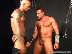 Leather Bears Anal Ramming