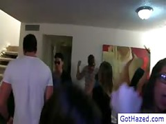 Dudes Gets Hazing At Party By Gothazed