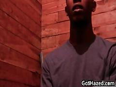 Fresh Straight College Guys Get Gay Hazed 55 By GotHazed