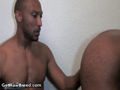 Buster Sly And Kamrun Black Gay Thugs Hardcore Gay Fucking 2 By GetRawBreed