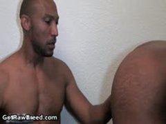 Buster Sly And Kamrun Black Gay Thugs Hardcore Gay Fucking 2 By GetRawBreed
