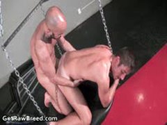 Igor Lucas And Zac Zaven Extreme Gay Hardcore Fucking On Massage Bed 3 By GetRawBreed