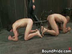 Gay Slave Gets Caged And Anal Electro Shocked 1 By BoundPride