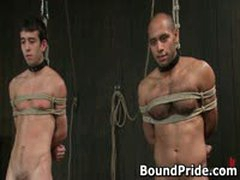 Gay Slaves Get Electro Therapy From Their Masters 3 By BoundPride